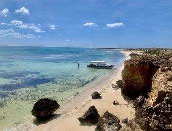Farasan Island trip