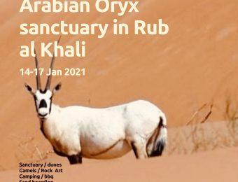 Arabian Oryx sanctuary trip